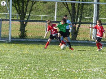 U 11 As Andolsheim vs Avenir Vauban 00012