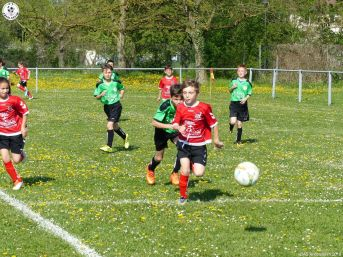 U 11 As Andolsheim vs Avenir Vauban 00014