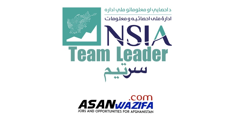 230 Jobs by NSIA as Team Leader