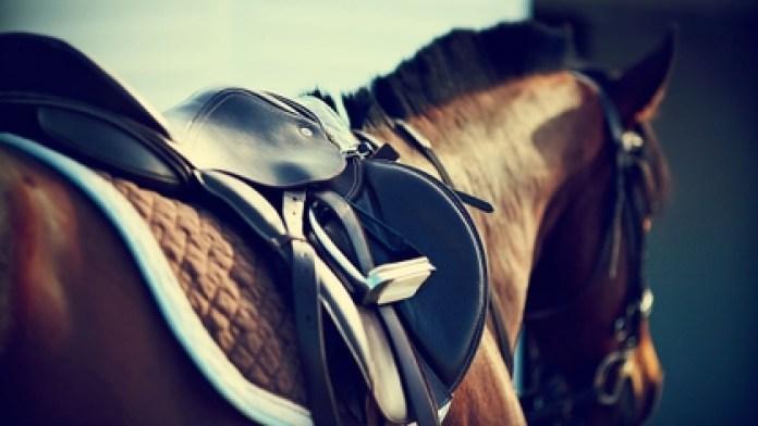 Emirati horseman Abdul Aziz Bin Faisal Al Qasimi was suspended until June 2040 (Shutterstock)