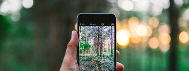 Six essential tips to take good photos with our iPhone
