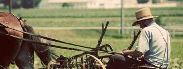 """Amish technology: what it's like to be the """"late adopter"""" slowest in the world"""