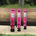 Asatre Hemp Dog Collars - Pink
