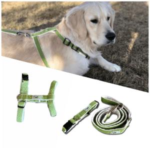 Asatre Hemp Green Harness Collar Leash