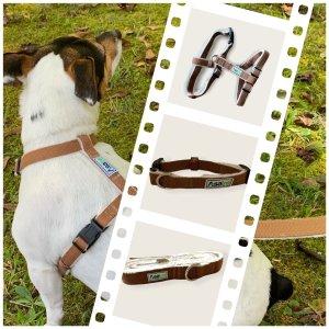 Hemp Dog Harness Collar Leash Bundle