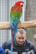 Aviary Visit 9