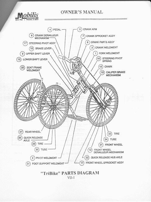 Elizabeth Kordes' Mobilis Lightning Bolt Tricycle for sale