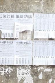 China 2015-168