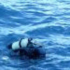 derniere-plongee-2010-6