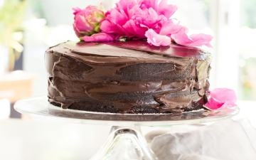 Frosted two layer chocolate beet cake on a cake stand