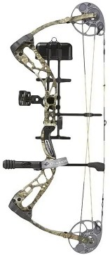 Types of Bows - compound bow