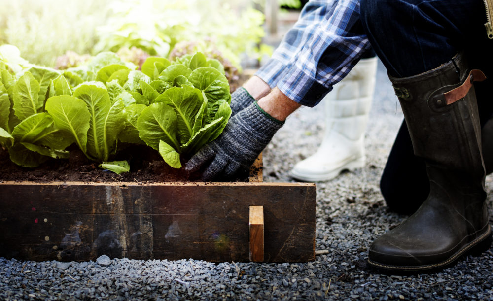 7 Easy Tips To Avoid Pain While You're Out In The Garden