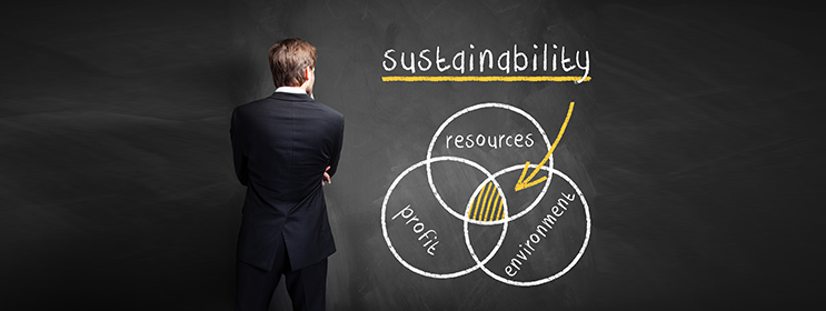 Why Does My Small Business Need an Environmental
