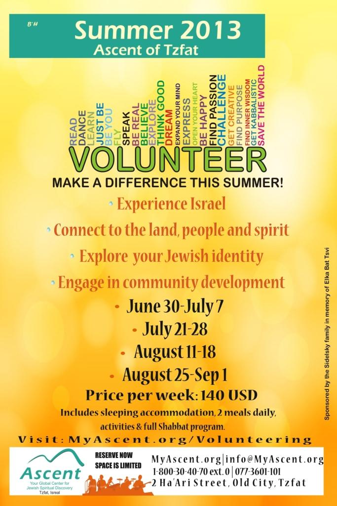 Summer Volunteer Program 2009 poster