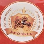 How To Apply for Operation Amotekun Form