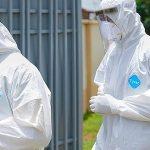 Why I believe coronavirus has been in Nigeria since 2019 – Nigerian Medical Doctor, Urchilla writes. 14