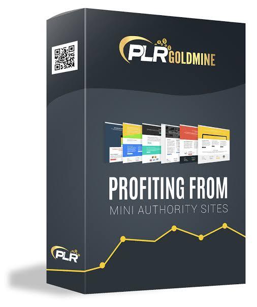 PLR Goldmine review