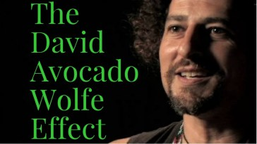David Avocado Wolfe Effect