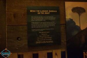 Ark Encounter Baby Animals