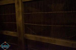 Ark Encounter Bat Cage