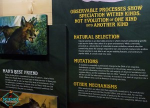Ark Encounter Evolution Denial Again