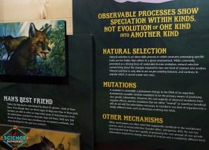 Ark Encounter Evolution Denial Again