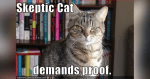 skepticism-cat-demands-proof