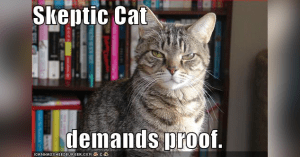 skepticism-cat-demands-proof