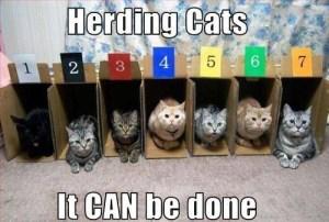 skepticism-herding-cats