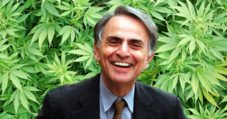 Image result for carl sagan""