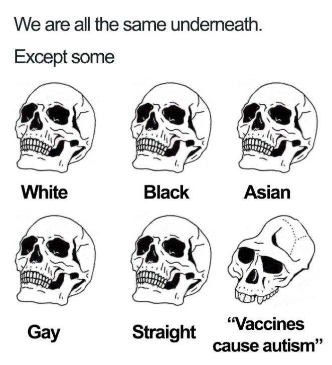 21 Perfect Memes to Mock Anti-Vaxxers