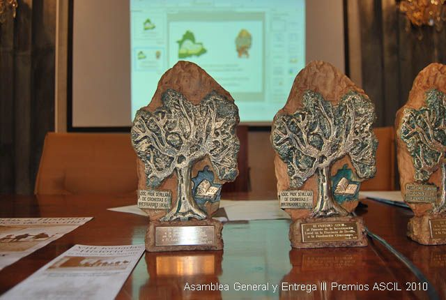 iii_premios_ascil_2010_0099