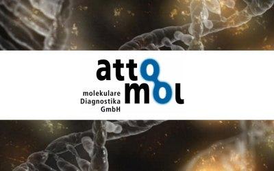 Nová souprava Anti-Ganglio ® LINA7, blot