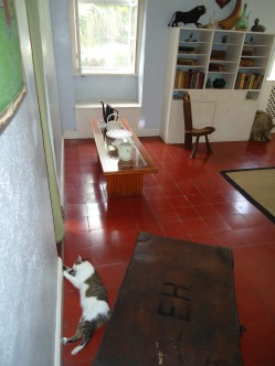 A partial view of Hemingway's writing room. Note the cat lounging on the floor, one of the famous five-toed cats that wander the grounds.
