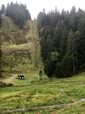 Munster trail 3