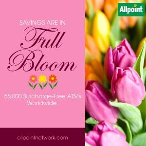 full bloom atm