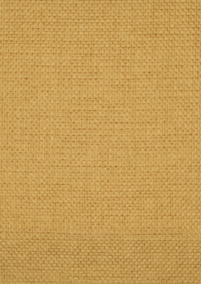 George Home Mustard Textured Weave Eyelet Curtains Home & Garden