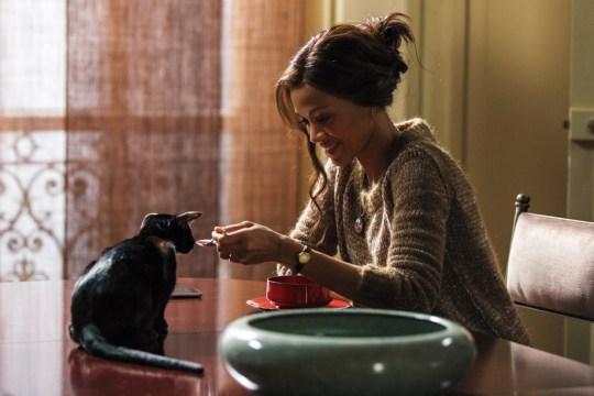 """Rosemary (Zoe Saldana) y el gato bautizado """"no-name"""" ¿por qué será?"""