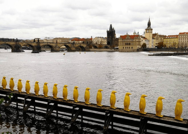 Pinguins Cracking Art Group Ilha Kampa Praga