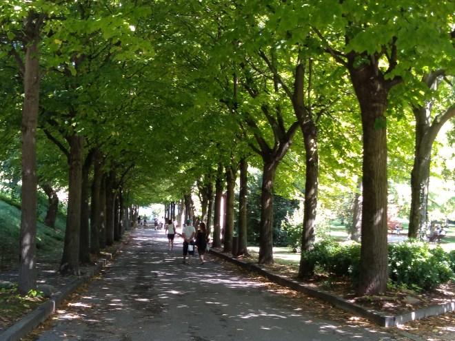 Lago de Garda Sirmione rua arborizada