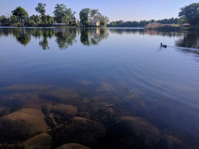Petergof Russia Petersburgo lago lá perto