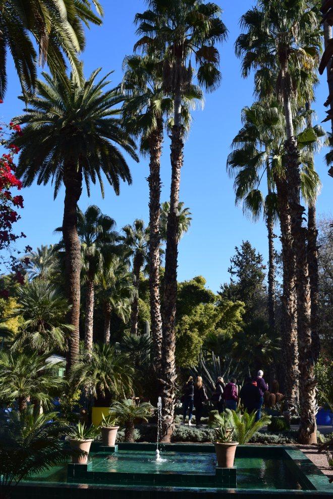Marrakech Jardins Majorelle 3