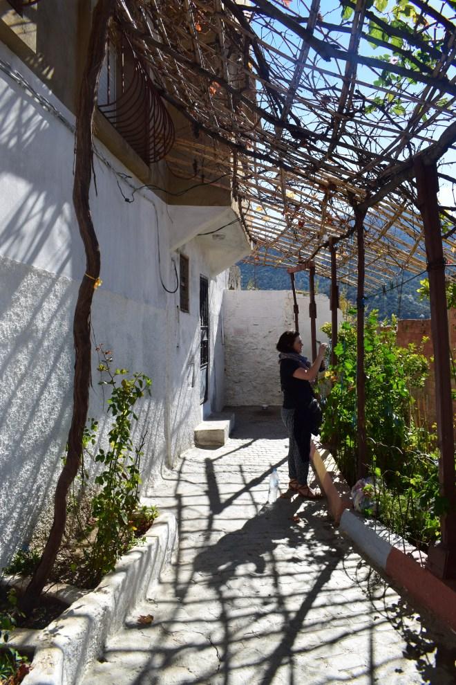 Moulay Idriss cidade sagrada marrocos foto