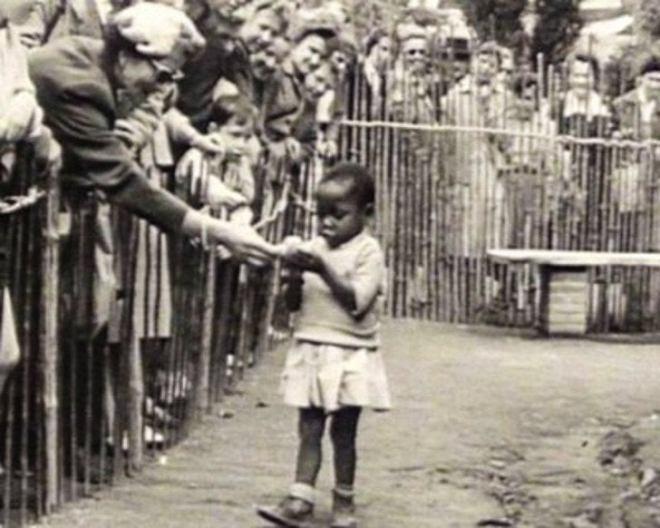 expo 1958 bruxelas zoologico humano vila congo