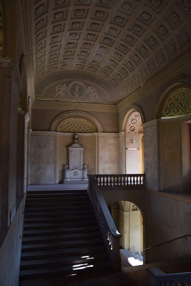 Pavia universidade 3