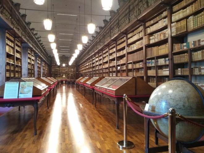 Pavia universidade 8