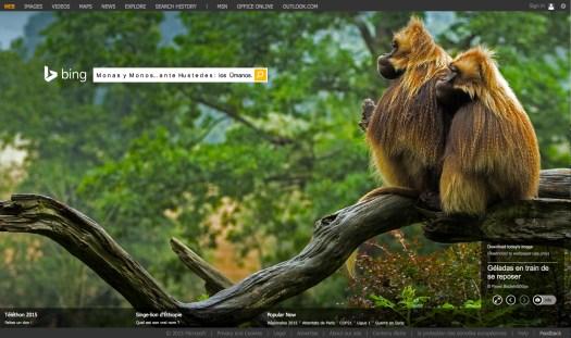 Uso justo de los medios. para hacer una pausa | Vía: Bing . com