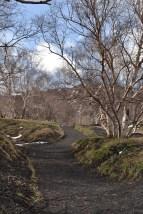 Etna Mt Sartorius Trail