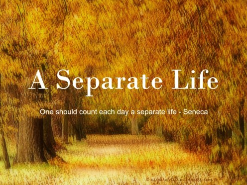 A Separate Life
