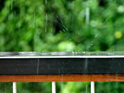 Raindrop Bounce